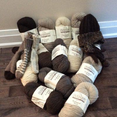 Pragmatic ecological wool yarn